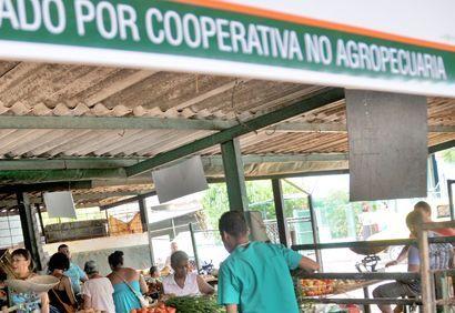 ¿Sabías que las cooperativas en Cuba frenan el desarrollo económico?