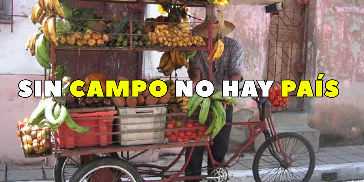 CONCURSO SIN CAMPO NO HAY PAÍS