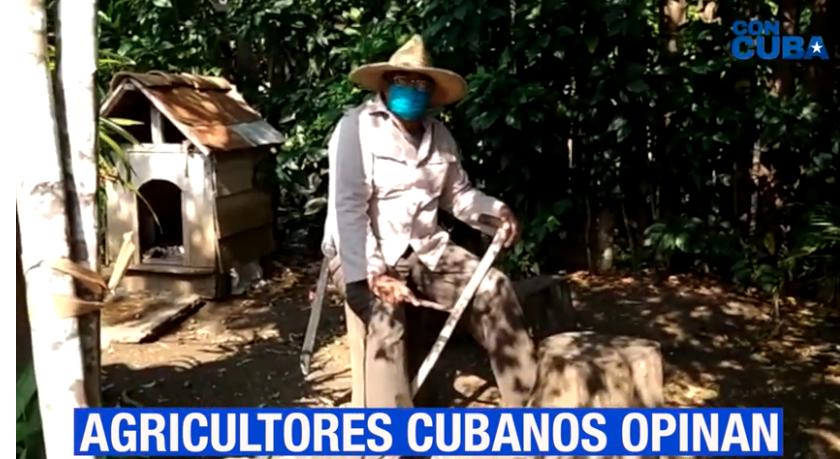 CON CUBA: SIN CAMPO NO HAY PAÍS
