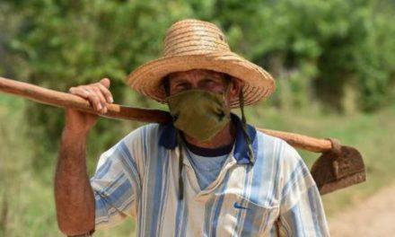 ¿Por qué Raúl Castro no libera el campo cubano?
