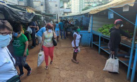 O se abre la economía cubana, o colapsa