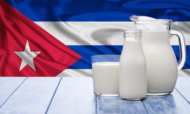 Solo liberando el campo habrá más leche en Cuba