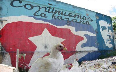 Cuba el único país donde te dicen lo que te toca para comer