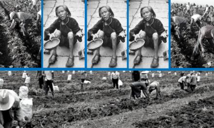 De las comunas de Mao al municipalismo en la agricultura en Cuba