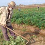 No habrá recuperación económica en Cuba sin liberar fuerzas productivas